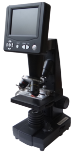 HLB-Test Mikroskop